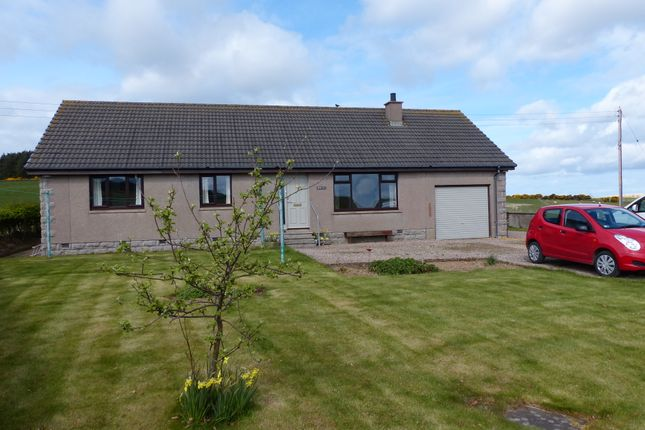Thumbnail Bungalow for sale in Maud, Peterhead