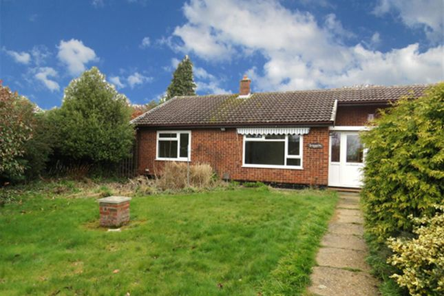 Thumbnail Bungalow to rent in Shillito Road, Blofield, Norwich