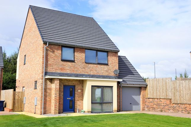 Thumbnail Detached house for sale in Watergate, Elba Park, Houghton Le Spring