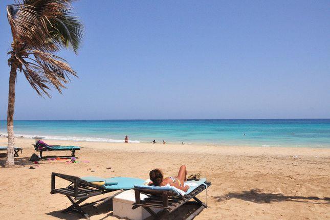Beach At Leme Bedje