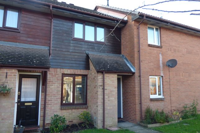 Thumbnail Terraced house to rent in Nickleby Gardens, Totton