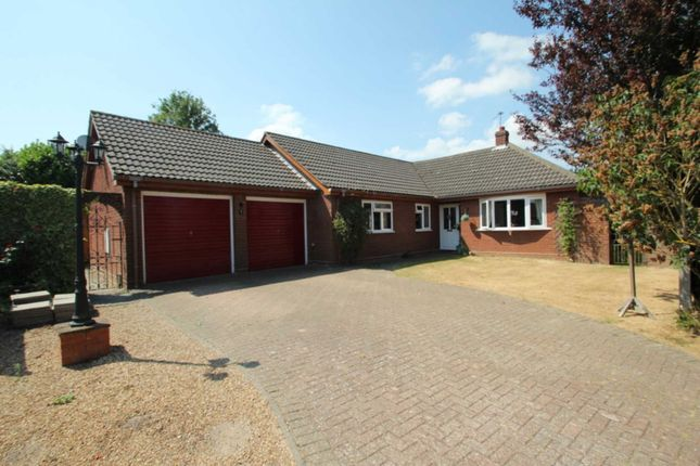 Thumbnail Detached bungalow for sale in Millfield Close, Blofield, Norwich