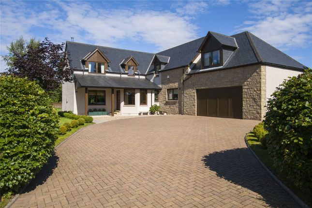 Thumbnail Detached house for sale in Tarriebank Gardens, By Arbroath, Angus