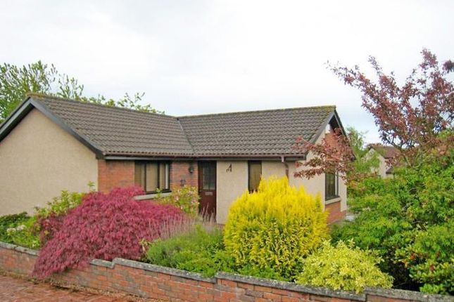 Thumbnail Bungalow to rent in 38 Inchkeith Avenue, Broughty Ferry, Dundee