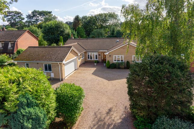 Thumbnail Bungalow for sale in Leicester Road, Quorn, Loughborough