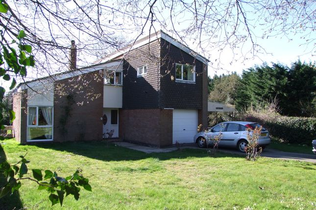 Thumbnail Detached house for sale in Manor Gardens, Saxmundham