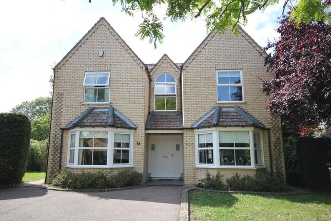 Thumbnail Detached house for sale in Carpond Lane, Wilburton, Ely