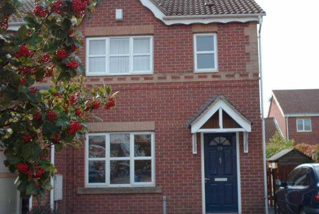 3 bed semi-detached house to rent in Sailors Wharf, Victoria Dock, Hull