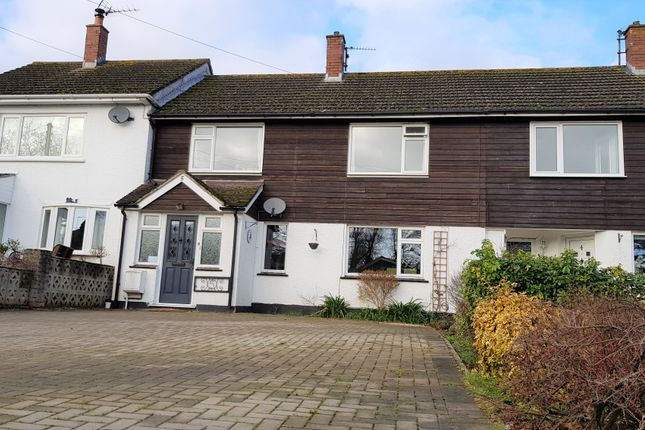 Thumbnail Terraced house for sale in Metcombe Vale, Metcombe, Ottery St. Mary
