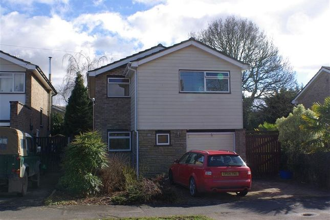 Thumbnail Property to rent in Catchpole Lane, Great Totham, Maldon