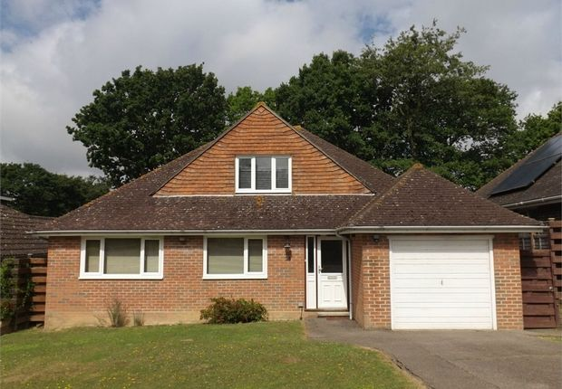 Thumbnail 3 bedroom detached bungalow to rent in Fryatts Way, Bexhill-On-Sea, East Sussex