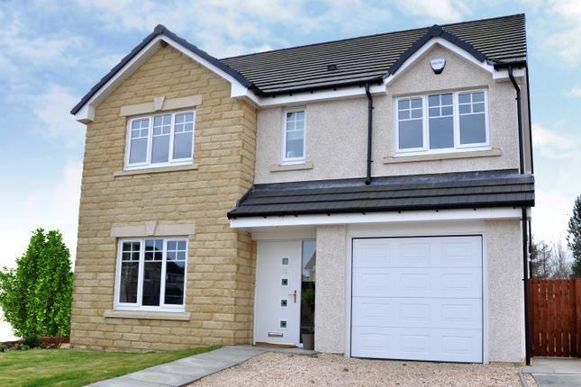 Thumbnail Detached house for sale in The Tweed At Bellside Brae, Cleland