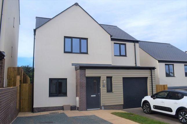 Thumbnail Detached house to rent in Foxglove Way, Paignton, Devon