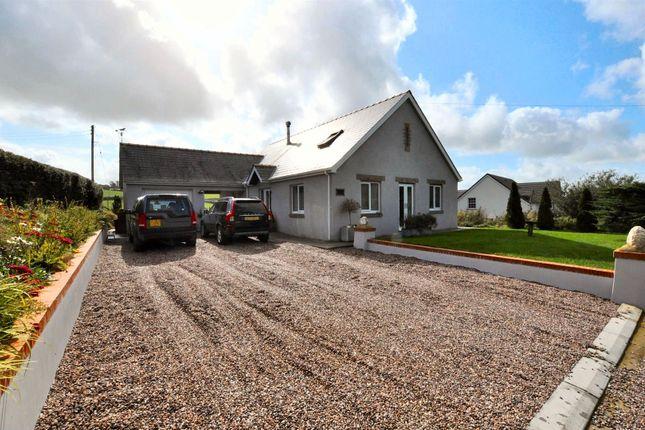 Thumbnail Detached house for sale in Helyg, Abernant, Carmarthen