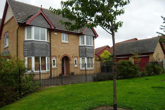 Thumbnail Detached house to rent in Heron Drive, Brampton Bierlow, Rotherham