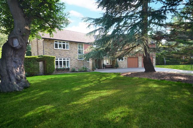 Thumbnail Detached house for sale in Cranley Road, Burwood Park, Hersham, Walton-On-Thames