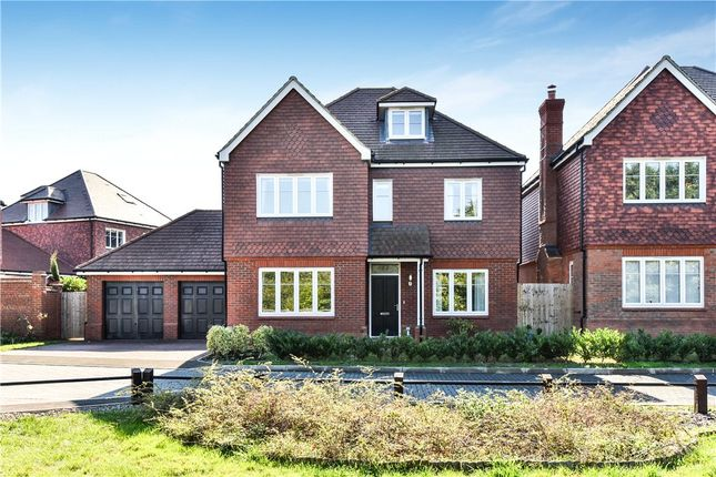 Thumbnail Detached house for sale in Cuckoo Crescent, Blackwater, Surrey