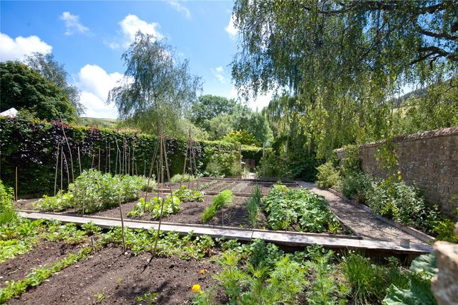 Kitchen Garden of Loders, Bridport, Dorset DT6