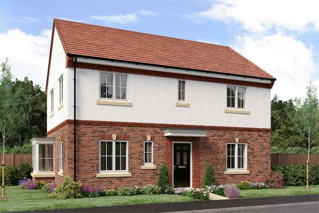 "Thumbnail Detached house for sale in ""The Stevenson"" at Netherton Colliery, Bedlington"
