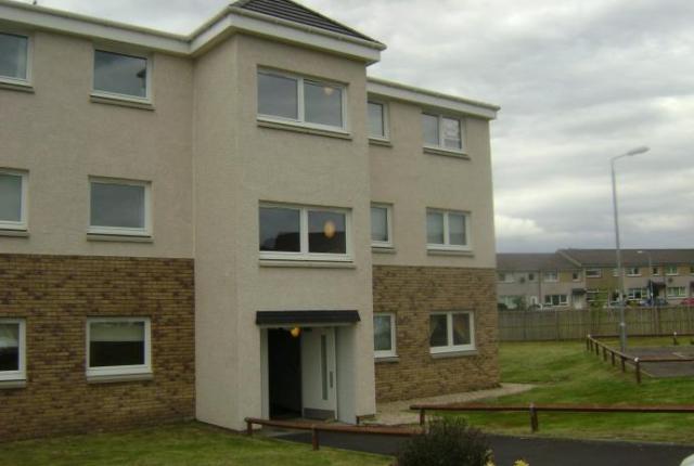 Thumbnail Flat to rent in Sanderling, Lesmahagow ML11,