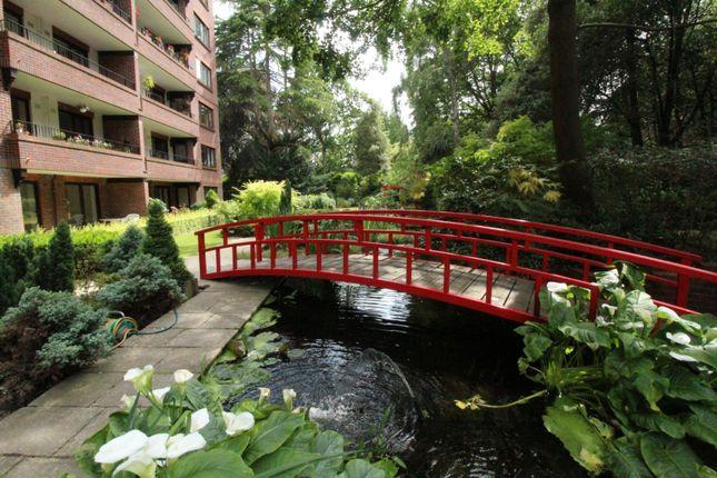 Communal Gardens of 45 Lindsay Road, Poole BH13
