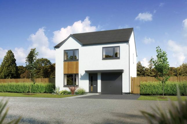 "Thumbnail Detached house for sale in ""Denewood"" at Whitehills Gardens, Cove, Aberdeen"