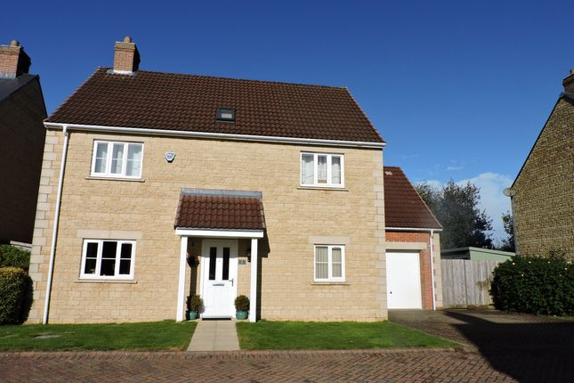 Thumbnail Detached house for sale in Mendip Gardens, Holcombe, Radstock