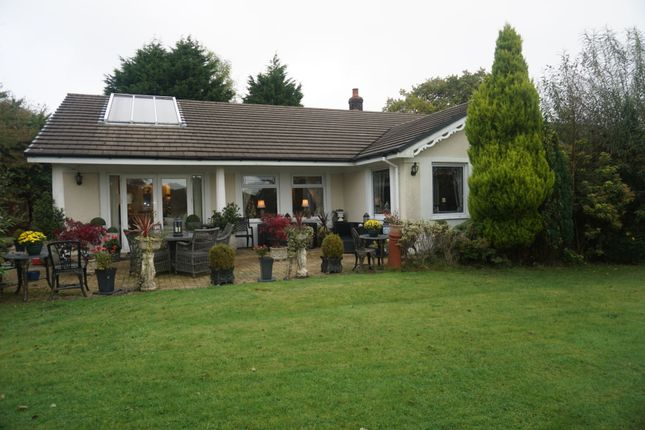 Thumbnail Detached bungalow for sale in Waterloo Road, Llanelli