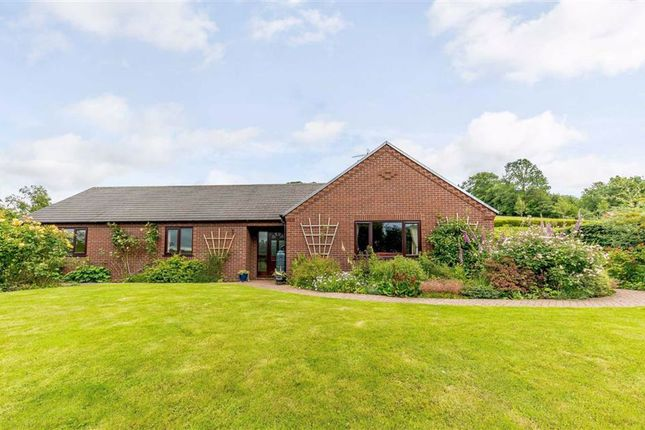 Thumbnail Bungalow for sale in Bronhaul, Llandyssil, Montgomery, Powys