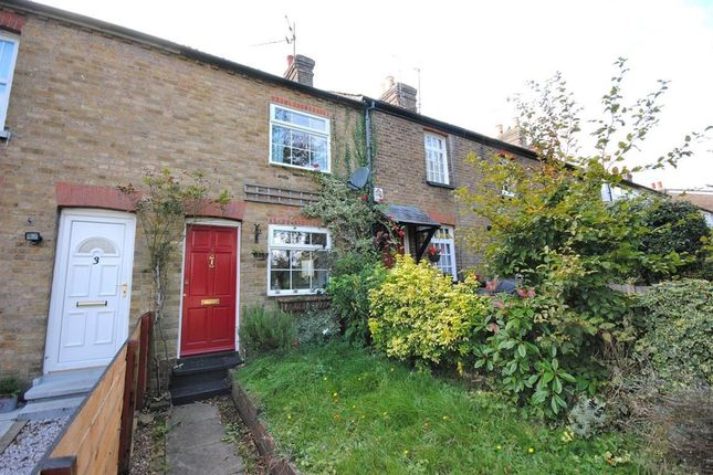 Thumbnail Terraced house to rent in Grove Place, New Town Road, Bishops Stortford