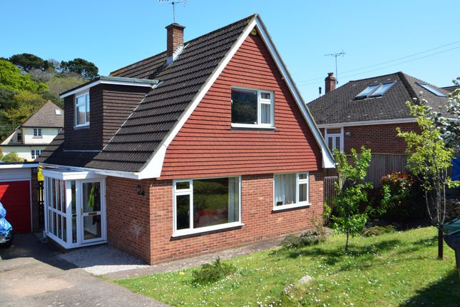 Thumbnail Detached house for sale in Lower Drive, Dawlish