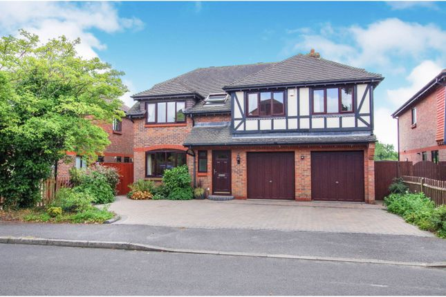 Thumbnail Detached house for sale in The Drove, Horton Heath, Eastleigh