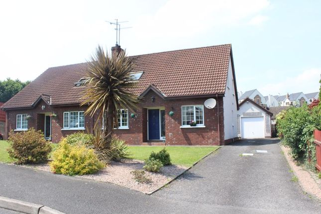 Thumbnail Semi-detached house for sale in Bramblewood, Bessbrook, Newry