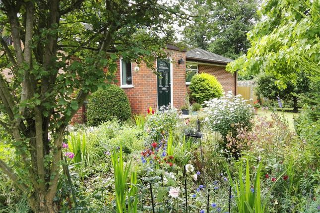 Thumbnail Detached bungalow for sale in The Walled Gardens, Froyle Lane, South Warnborough