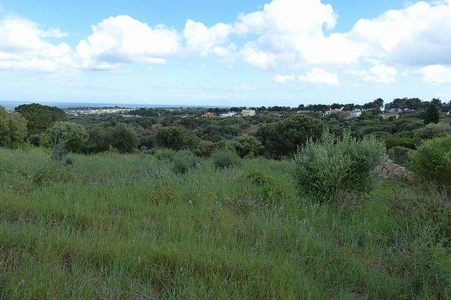Land for sale in Plot, La Reserva, Andalucia, Spain