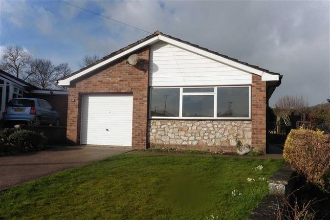 Thumbnail Detached bungalow to rent in 13, Agincourt Drive, Welshpool, Welshpool, Powys