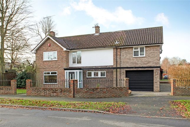 Thumbnail Detached house for sale in Irwin Drive, Horsham, West Sussex