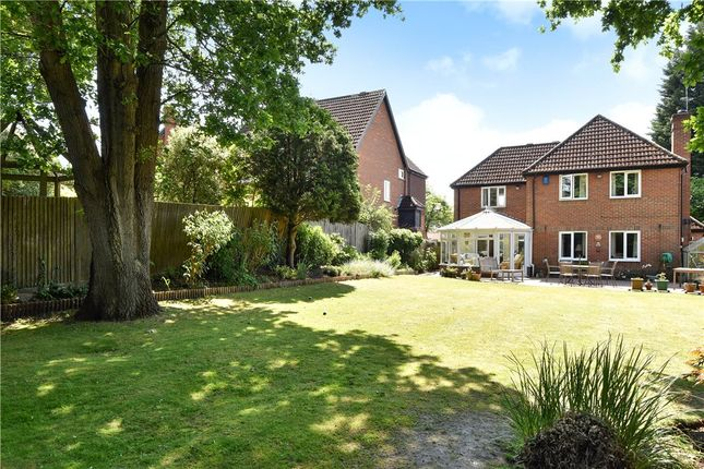 Thumbnail Detached house for sale in Milden Close, Frimley Green, Camberley