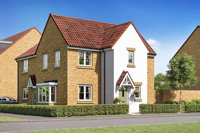"""Thumbnail Property for sale in """"Windsor"""" at Foxby Hill, Gainsborough"""