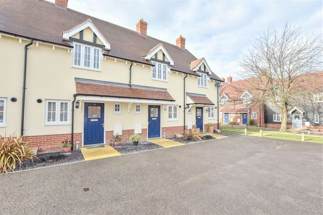 Thumbnail Terraced house for sale in Richmond Road, Colchester, Essex