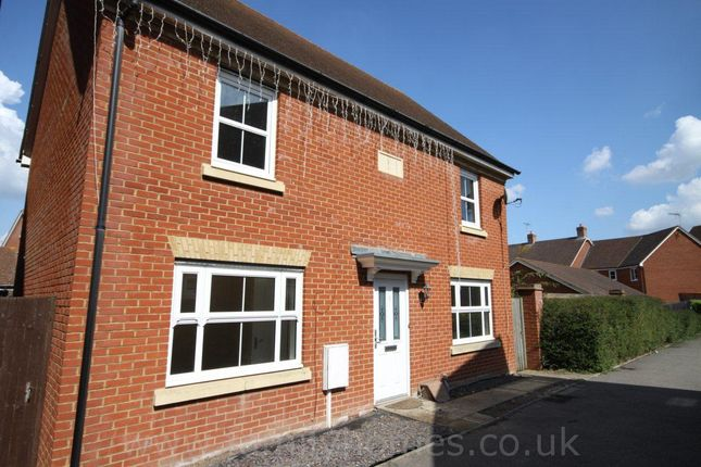 Thumbnail Property to rent in Daisy Walk, Sittingbourne
