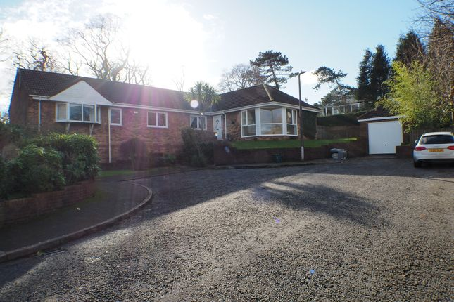 Thumbnail Detached house to rent in Whitegates, Mayals, Swansea