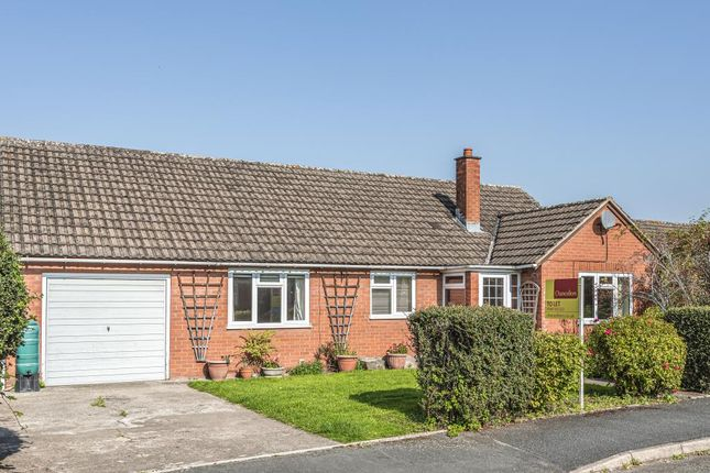 Thumbnail Detached bungalow to rent in The Meads, Kington