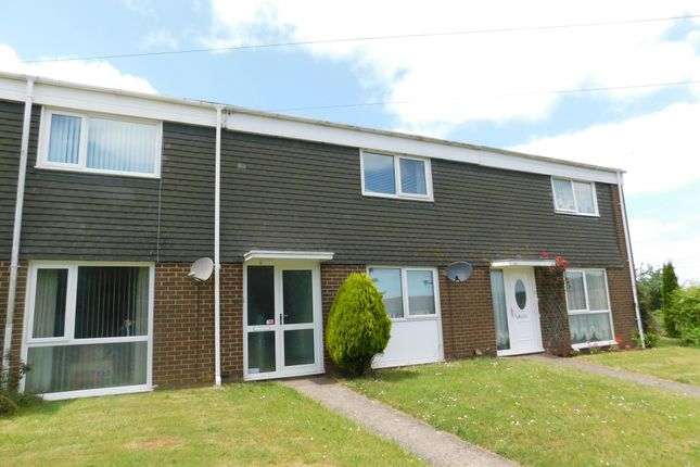 Thumbnail Terraced house for sale in Larch Walk, Torquay