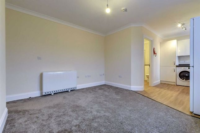 Living Area (Alternative View)