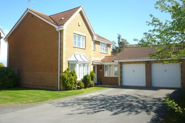 Thumbnail Detached house to rent in Merlin Way, Hartlepool