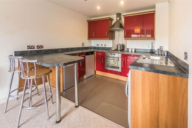 Thumbnail Property to rent in Phoebe Road, Copper Quarter, Swansea