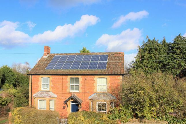 Thumbnail Detached house for sale in Middle Street, Shepton Beauchamp, Ilminster, Somerset