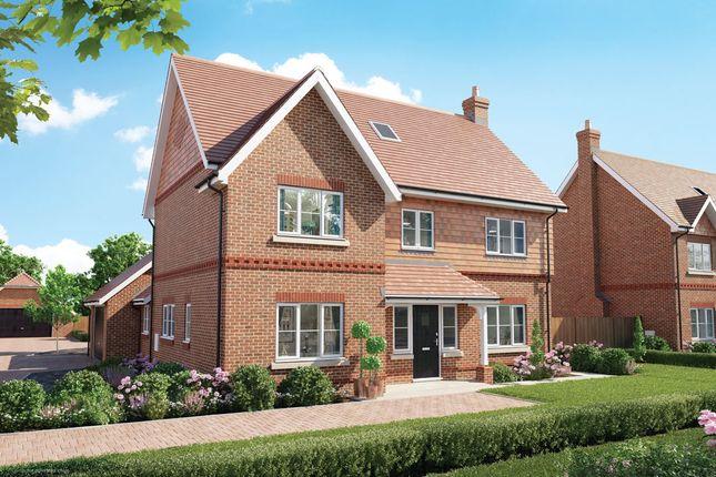 Thumbnail Detached house for sale in Copsewood, Oakwood Road, Horley, Surrey