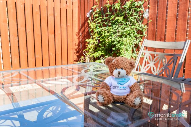 Smiffy Bear of Ecclesfield Mews, Ecclesfield, - Viewing Essential S35